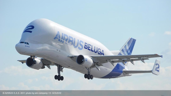 The Beluga fleet is responsible for transporting aircraft parts between Airbus facilities. (Photo courtesy of Airbus)